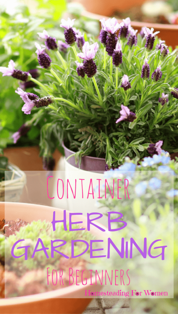 Container Herb Gardening For Beginners (1)