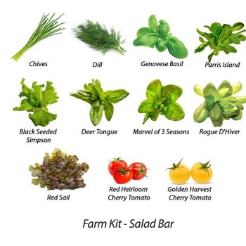 350x350 Grow your own salad kit