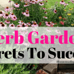 Best Secrets Of Successful Herb Gardening -Ebook