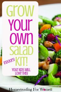 Grow your own salad kit Indoors