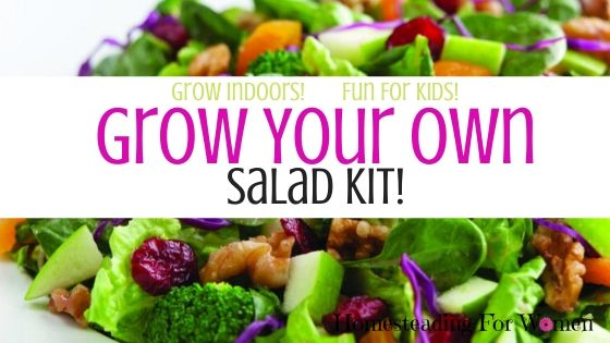 Grow your own salad kit