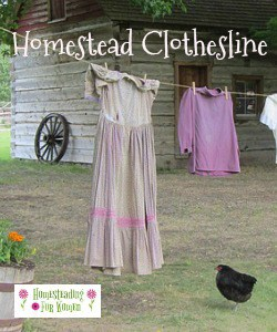 Homestead clothesline