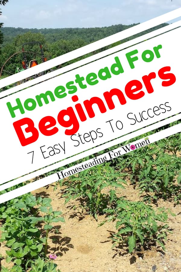 Homestead For Beginners 7 Easy Steps To Success