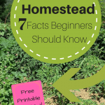 7 Homestead Facts Beginners Should Know  Homestead For Beginners