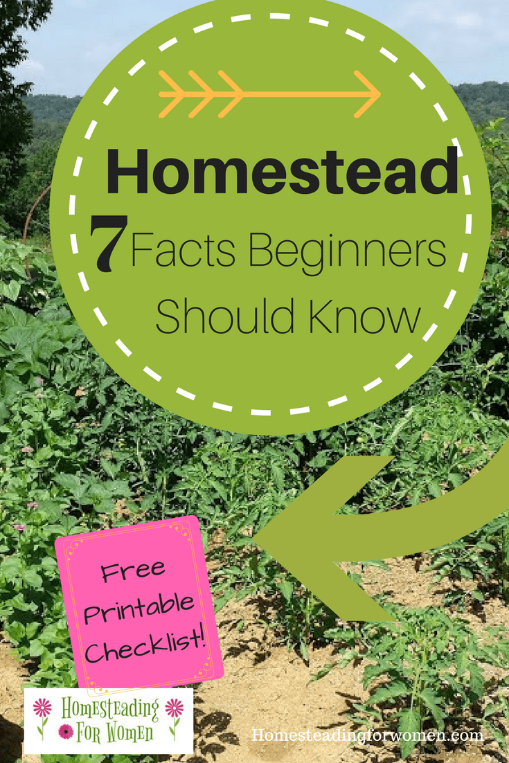 Homestead For Beginners 7 Facts Beginners should know.