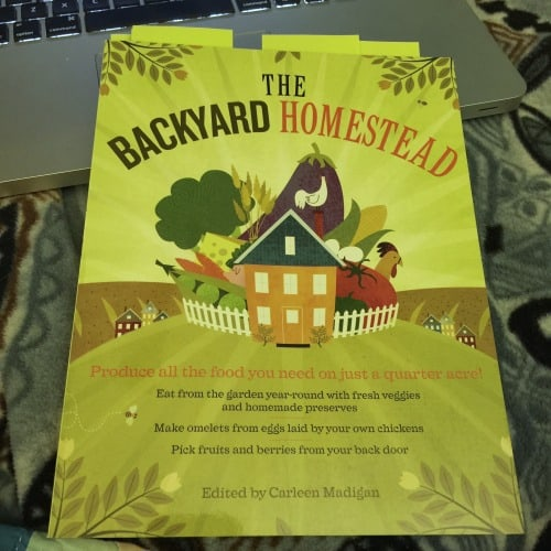 Homestead for beginners book