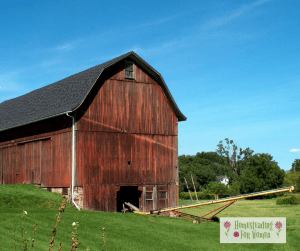 Small Homesteading