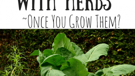 What to do with herbs-