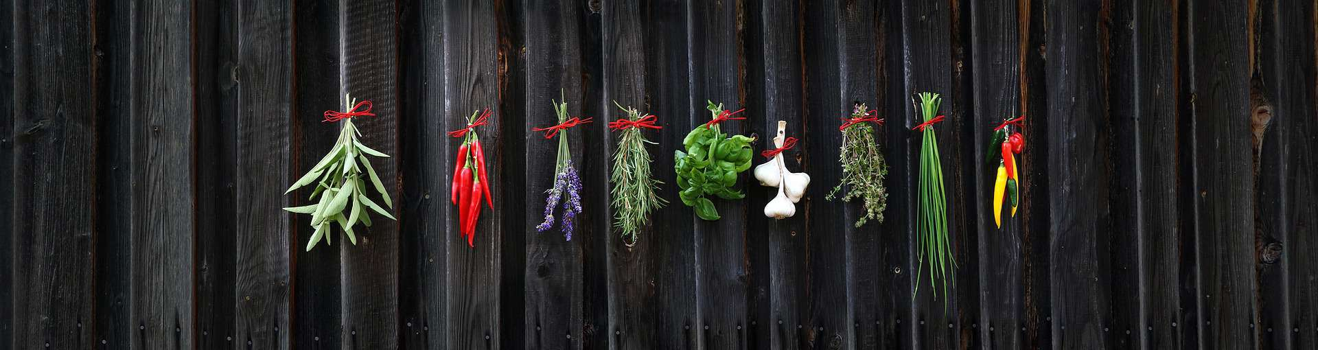 When To Harvest Herbs