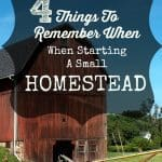 4 Things To Remember When Starting A Small Homestead