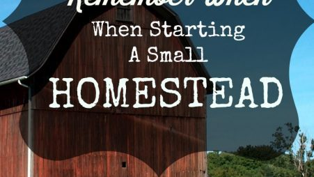 starting a small homestead