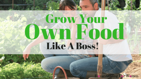 Grow your own food like a boss