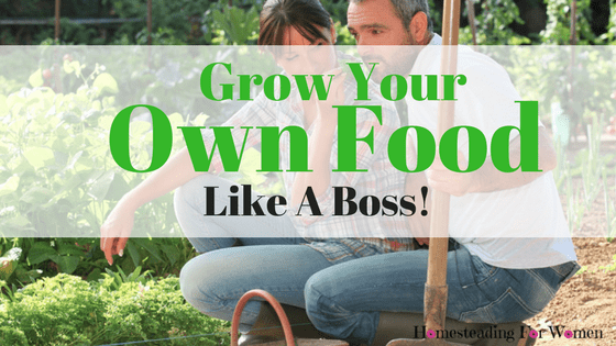 Is Growing Your Own Food Worth It?
