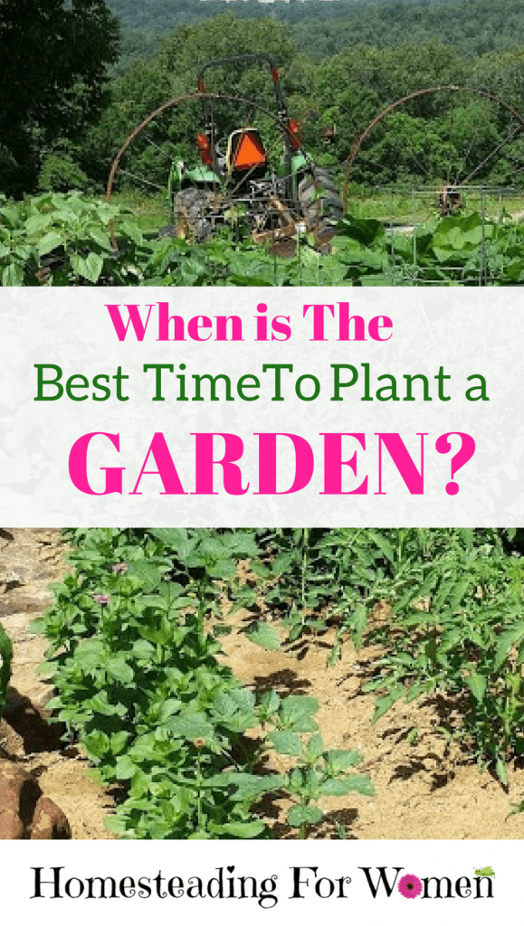 Best time to plant a garden