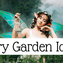 7 Fairy Garden Ideas