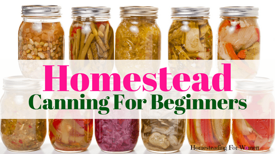 Easy Homestead Canning Food Tips For Beginners