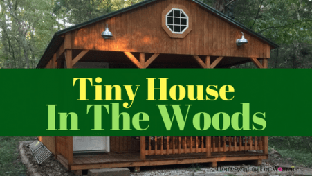 Tiny House in the woods