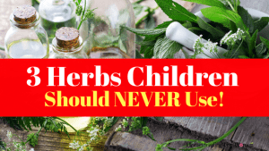 Warning! 3 Herbs You Should Never Use On Children, They Can Be Deadly!