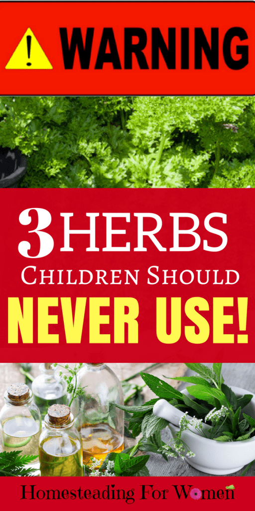 Warning 3 Herbs Children Should Never Use, they can be deadly.