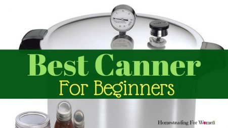 Best Canner For Beginners