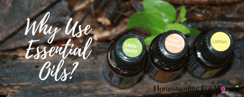 Where buy essential oils