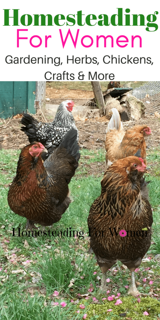 Jan2018 Homesteading For Women