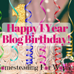 Happy 1st Blog BIrthday