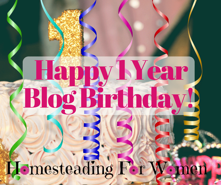 Happy 1st Blog Birthday To Me! Looking Back Over Last Year
