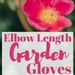 Elbow Length Garden Gloves