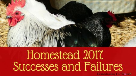 2017 Homestead success and failures