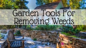 Garden Tools For Removing Weeds