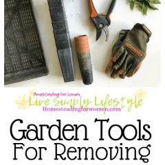 Garden tools for removing weeds-min