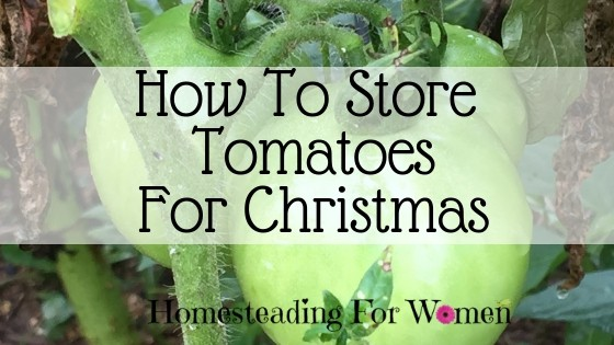 How to store tomatoes for Christmas