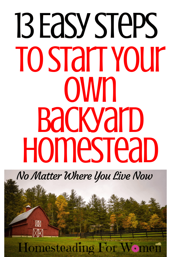 13 Easy Steps To Start Your Own Backyard Homestead-min
