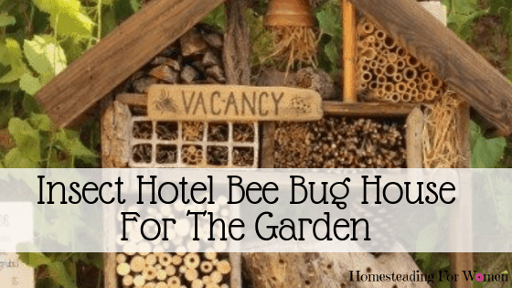 Insect Hotel Bee Bug House -Benefits in the Garden