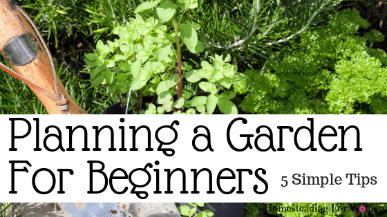 Planning a Garden For Beginners -5 Things You Must Do First