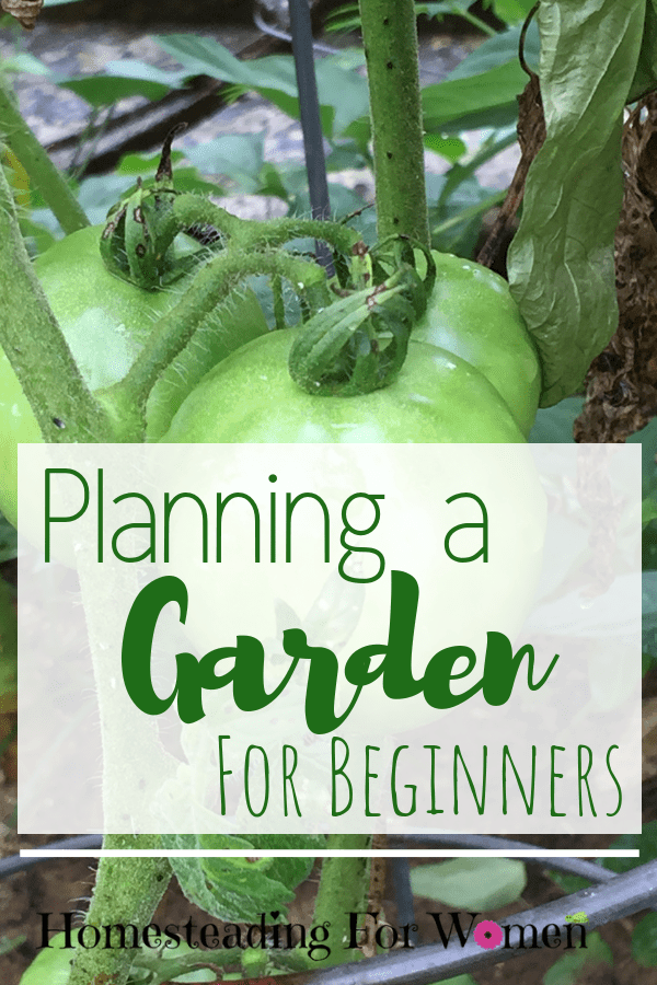 Planning a Garden For Beginners-min