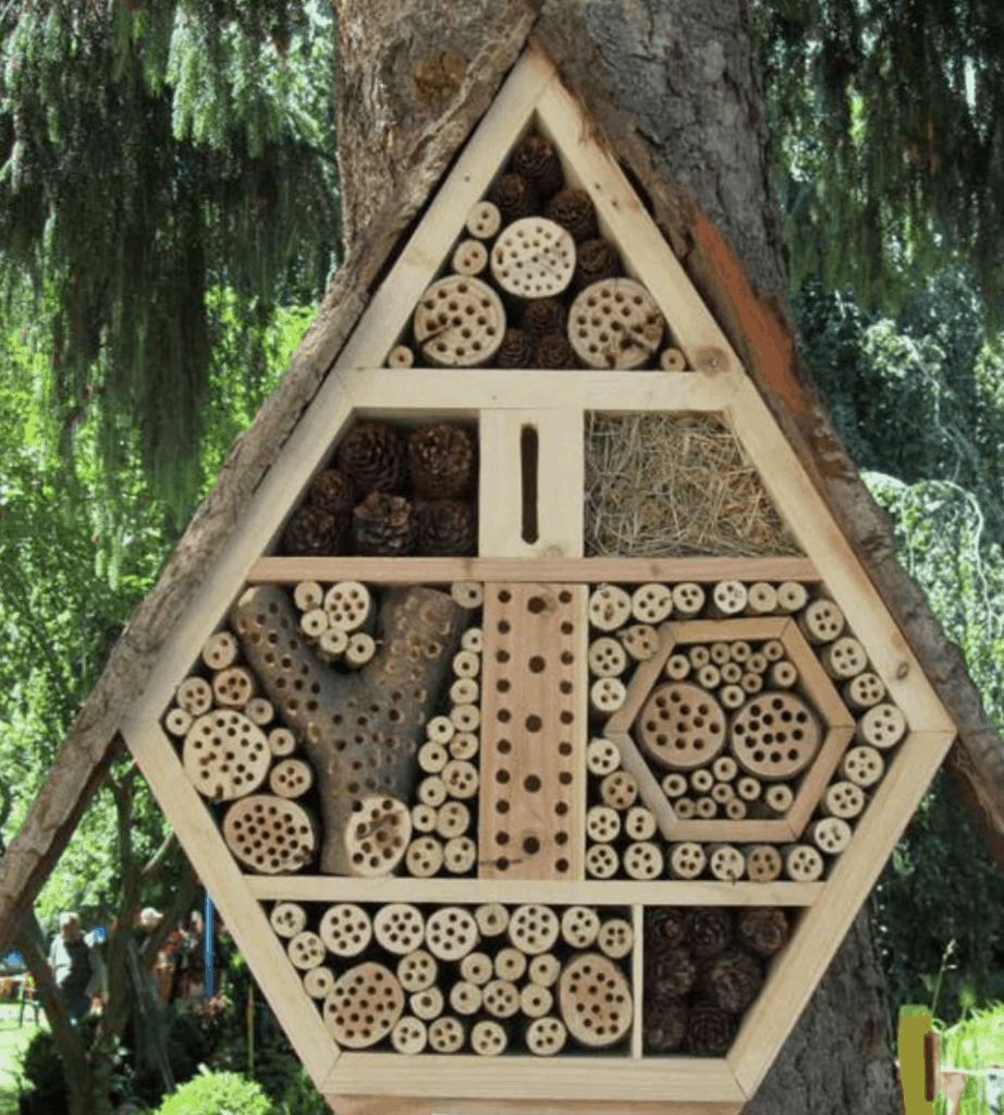 Insect house for your garden
