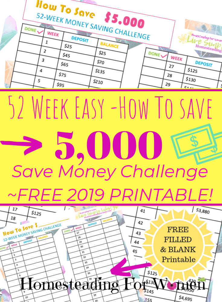photo relating to 52 Week Money Saving Challenge Printable identify Totally free 52 7 days Basic Conserve Funds Concern Printable 2019