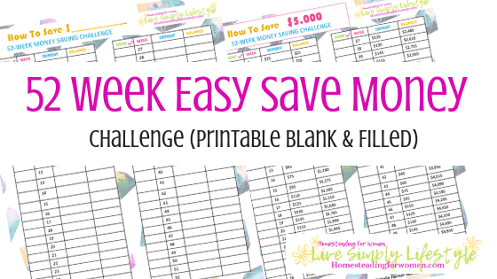 52 Week Easy Save Money Challenge Printable 2019-min