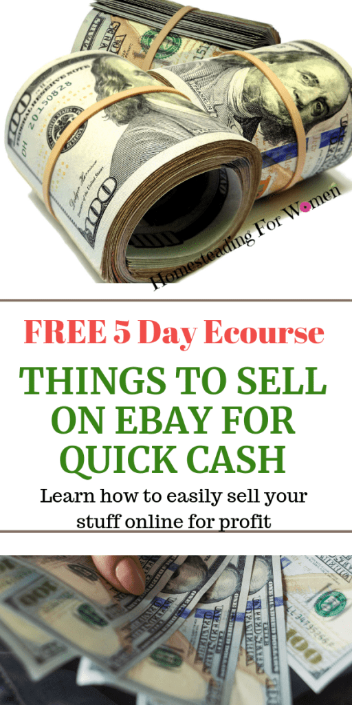 Things To Sell On Ebay To Make Quick Cash Free Ecourse
