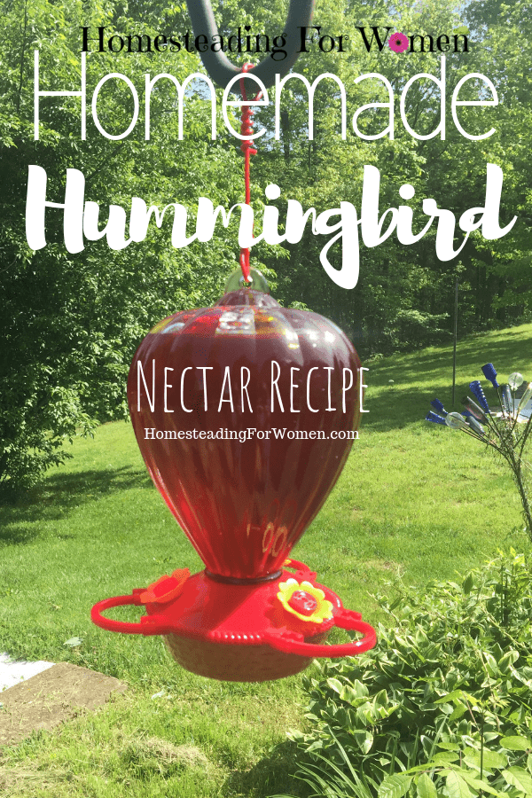 Easy Homemade Hummingbird Recipe-min
