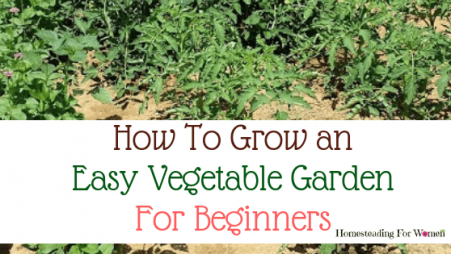 Vegetable Gardening for beginners (2)-min