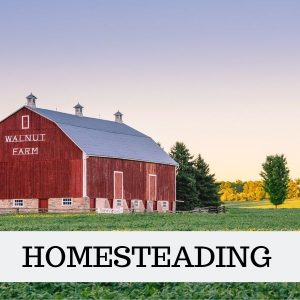 HOMESTEADING PRODUCT REVIEWS