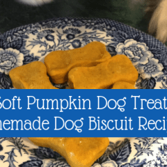 Soft pumpkin dog treats