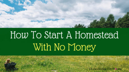 How to start a homestead with no money (1)-min