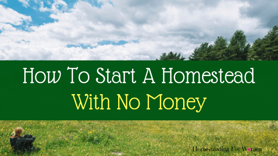 How To Start A Homestead With No Money