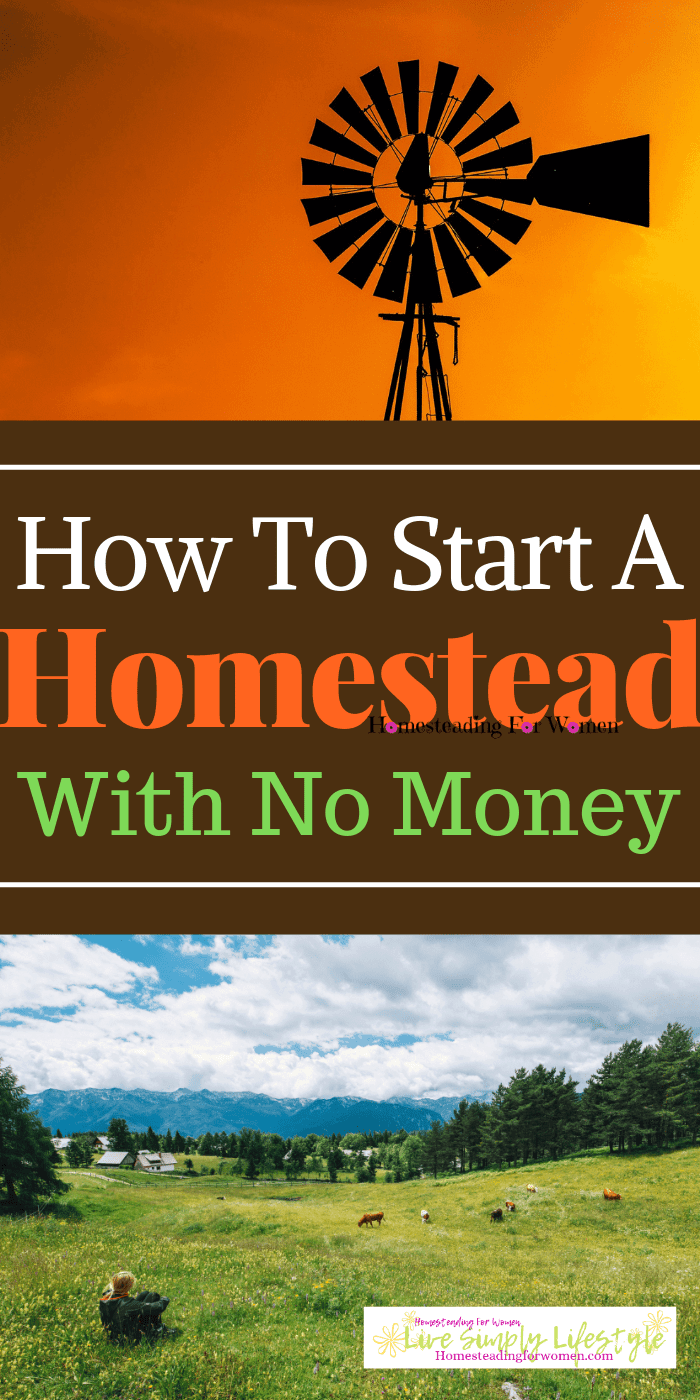 How to start a homestead with no money-min