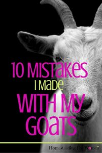 10 Mistakes I Made With My Goats on the farm