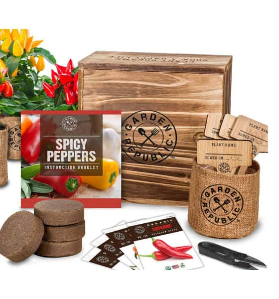 Indoor Pepper Growing Kit for the Gardeners who have everything